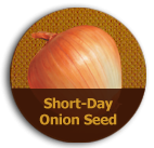 shortday_icon